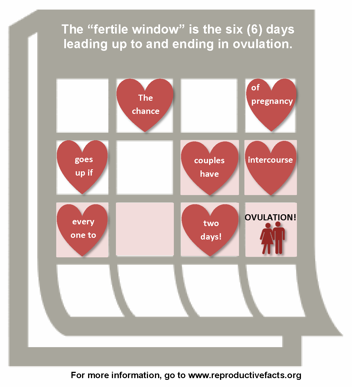 Infographic Fertile Window
